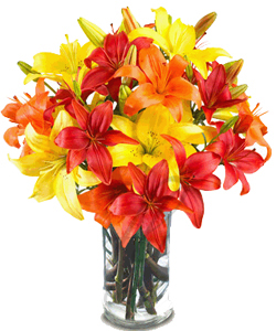 Mix Asiatic Lilliums in a glass vase