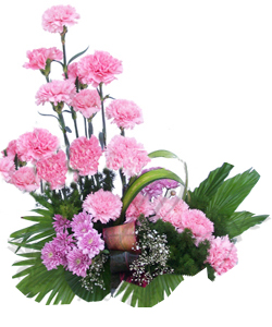 Basket of 20 Carnations