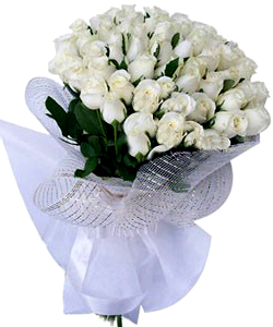 Hand Bunch of 50 White Roses