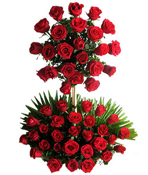Two Tier Arrangement of 100 red roses