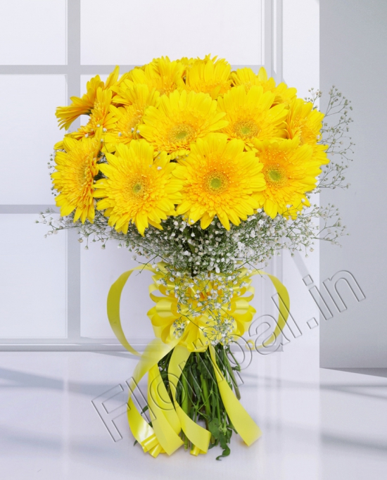 Bunch of 15 Yellow Gerbera flowers delivery in Bunch of 15 Yellow Gerbera