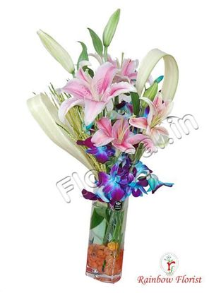 Lilly orchids in vase