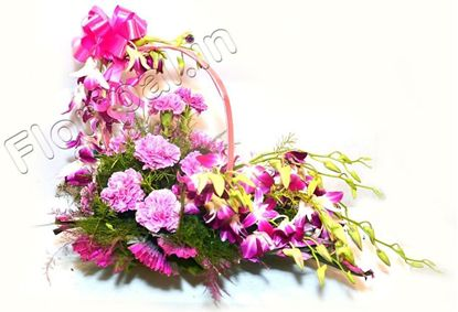 carnation orchid basket
